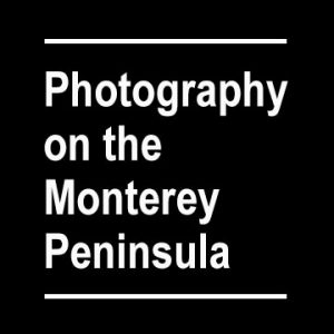 Photography on the Monterey Peninsula